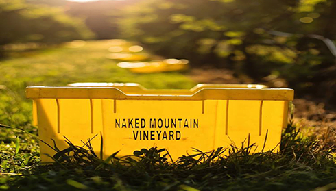 Naked Mountain Vineyard, Fauquier Winery, A member of the Fauquier Wine Council, Virginia Vineyard.