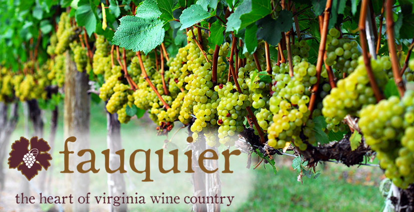 Fauquier Wine - Facebook cover image
