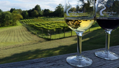 Winding Road Cellars, Fauquier Winery, A member of the Fauquier Wine Council, Virginia Vineyard.